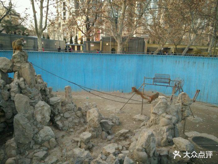 渭滨公园动物园图片 - 第45张