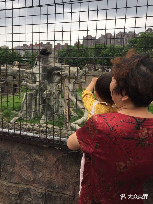 南昌新动物园图片 - 第274张