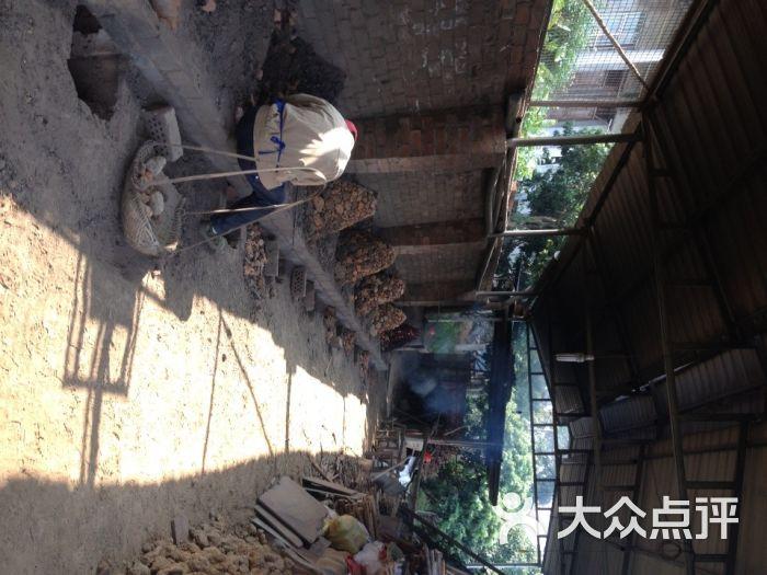 猴哥花果山景区-图片-南宁周边游-大众点评网