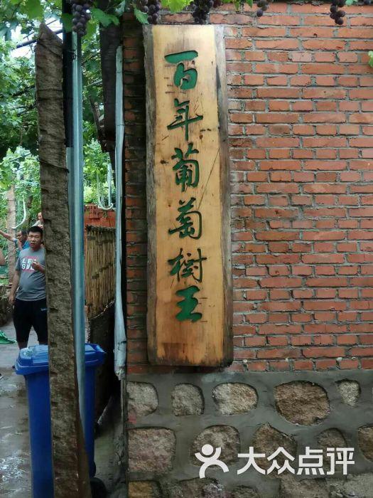 葡萄沟风景区-图片-昌黎县周边游-大众点评网
