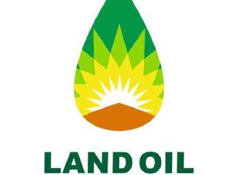 陆地石油·大林加油站