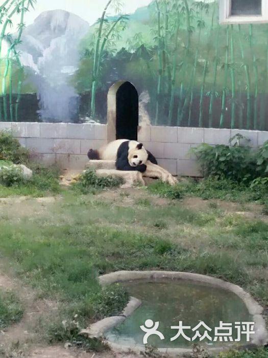 南昌新动物园图片 - 第78张