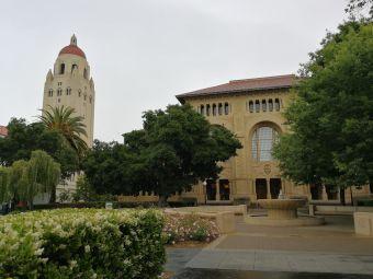 斯坦福圖書館