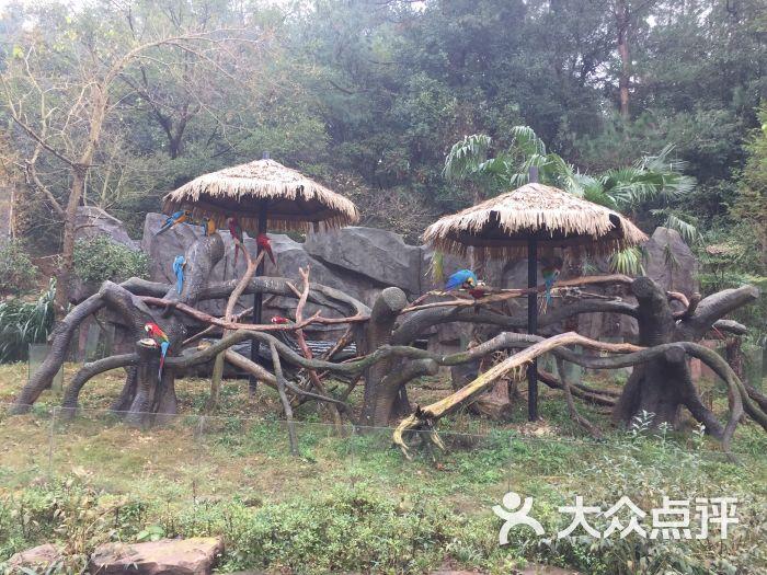 雅戈尔动物园图片 - 第1张