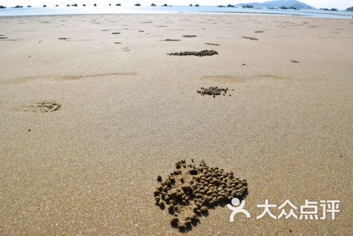 渔寮旅游度假风景区-图片-苍南周边游-大众点评网