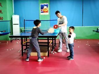 乒搏乒乓球
