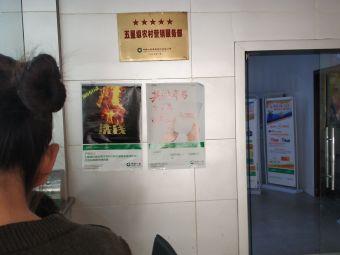 中国人寿保险(申港分公司)