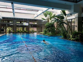 西双版纳洲际度假酒店·游泳健身