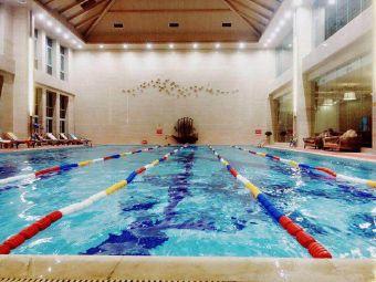海亮国际游泳培训班