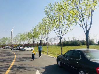 白泥地公园停车场