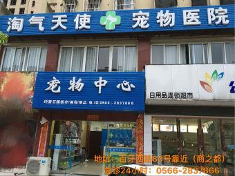 淘气天使宠物医院(池州店)