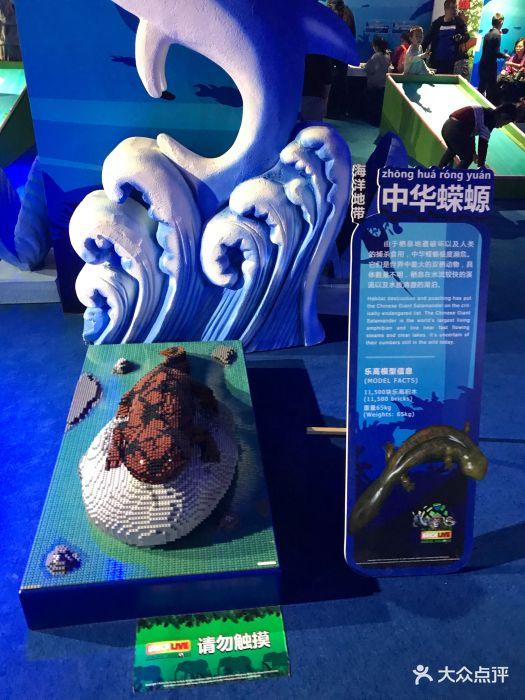 乐高动物王国环保展鸟巢站图片 - 第104张