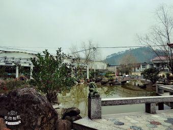 神六螺旋藻基地