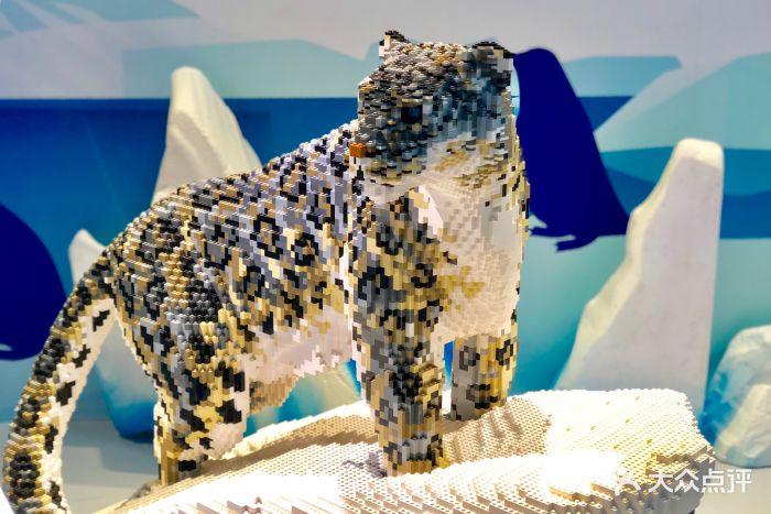 乐高动物王国环保展鸟巢站图片 - 第53张