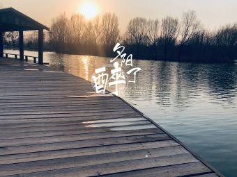 王明寨小学