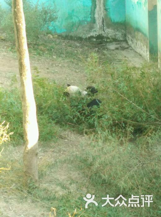 温州动物园图片 - 第256张