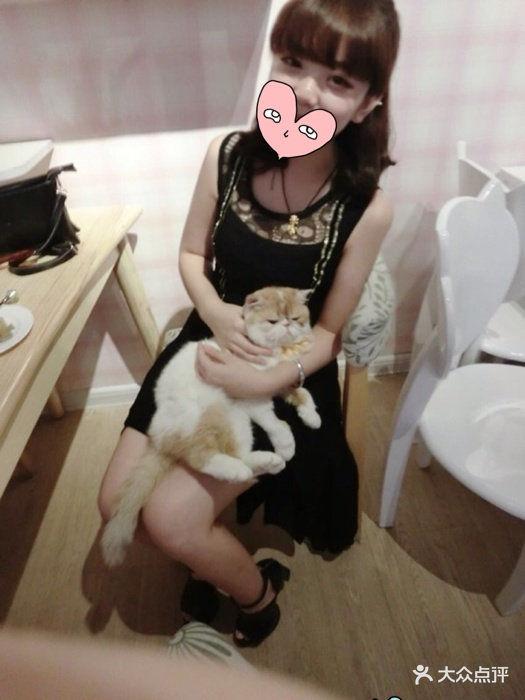星猫咖啡(中街春天店)图片 - 第819张