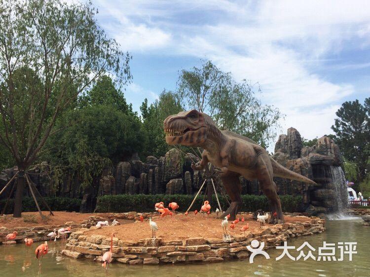 北京野生动物园-恐龙园图片-北京周边游-大众点评网