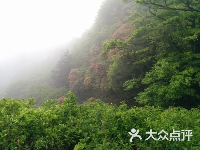 安福武功山风景区-观音庙图片-安福县周边游-大众点评