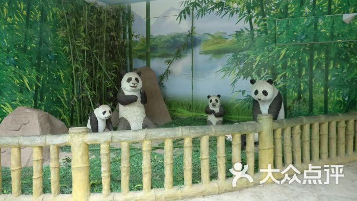 南昌新动物园图片 - 第11张