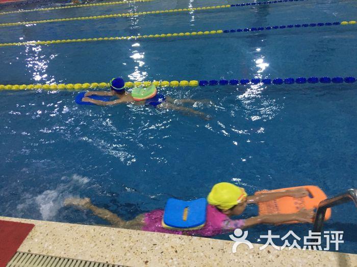 澳大利亚教练员等级划分 游泳培训 游泳资讯 悠游网 X Master Swim
