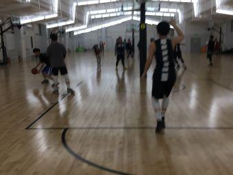 劲兔篮球俱乐部