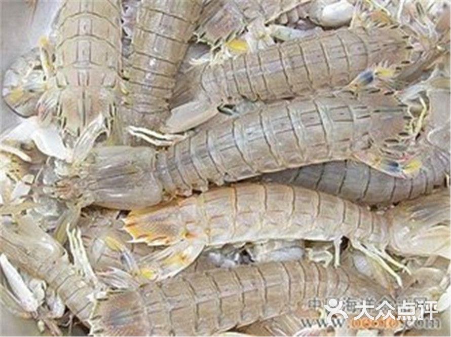 深海800米海鲜自助餐火锅(双井店)皮皮虾图片 - 第3486张