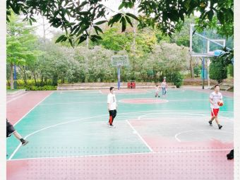 芒果篮球场