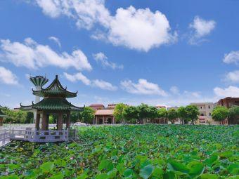 蛤岭文化中心