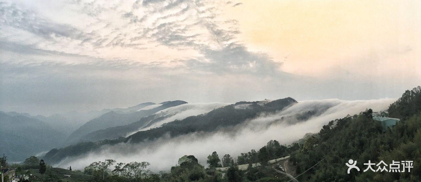 阿里山国家风景区图片 - 第9张