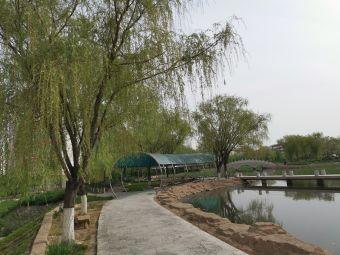 包头医学院-国际文化交流中心