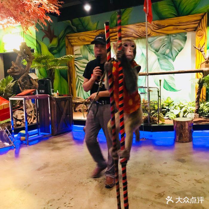 天津zoonly动物主题公园图片 - 第1108张