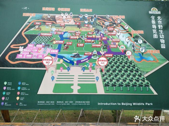 北京野生动物园图片 - 第14554张