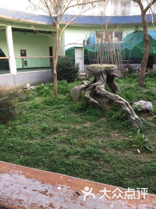 南昌新动物园图片 - 第85张