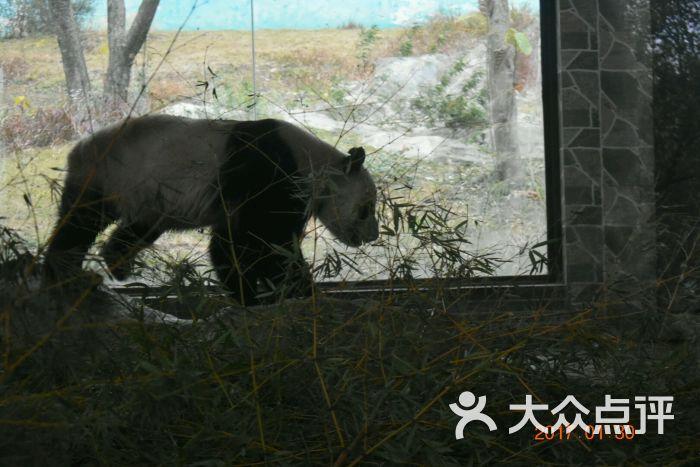 温州动物园图片 - 第107张