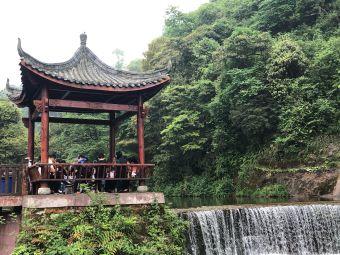 秀水三韵-藏茶品尝区