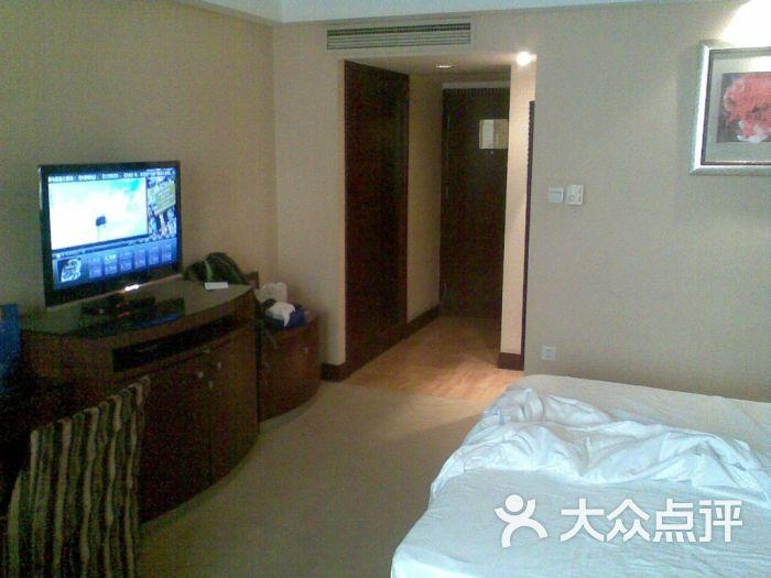 南方君临酒店-电视机-客房-电视机图片-重庆酒店