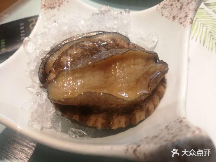 集渔泰式海鲜火锅鲍鱼图片