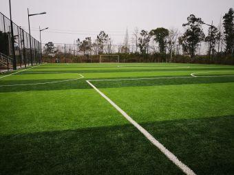 三河村足球场