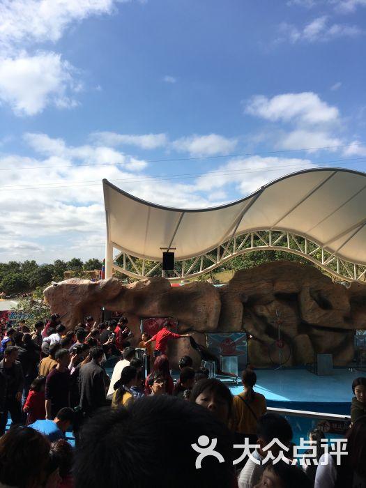 海丝野生动物园图片 - 第7张