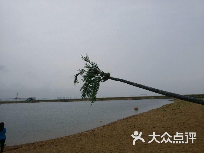 海阳连理岛图片 - 第19张