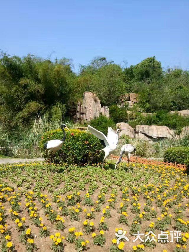 福州动物园图片 - 第6张
