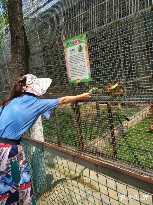 临汾市动物园图片 - 第47张