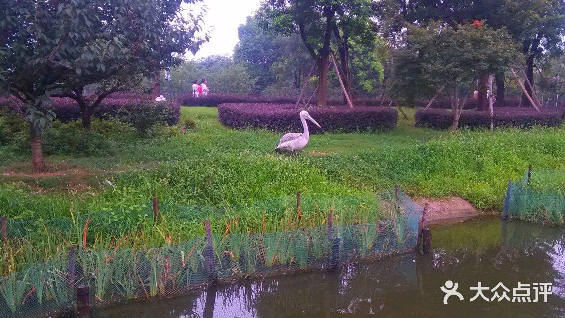 无锡动物园·太湖欢乐园-图片-无锡周边游-大众点评网