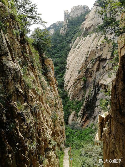 罗山国家森林公园图片 - 第26张图片