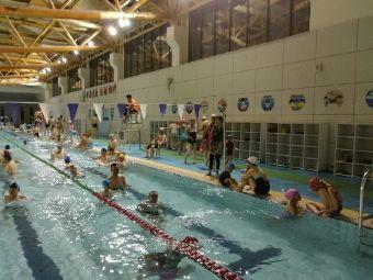 体育公园游泳馆