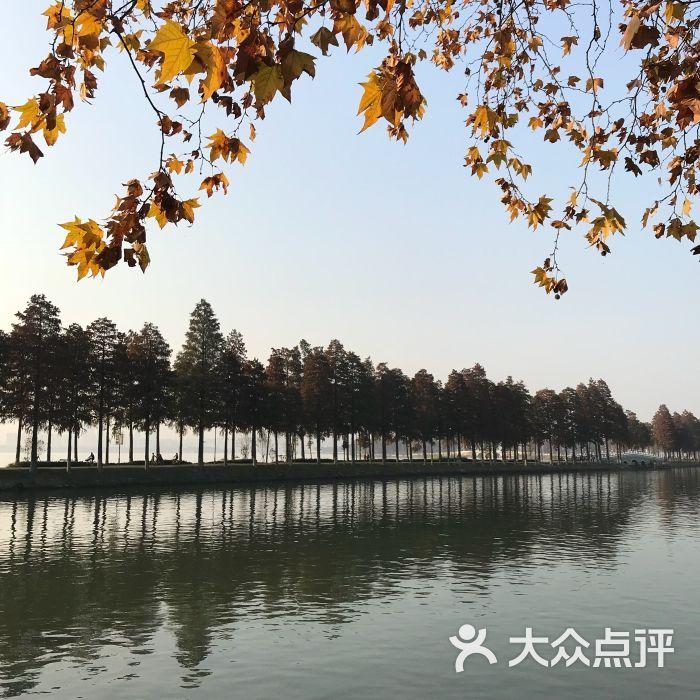 东湖磨山风景区图片 - 第3张