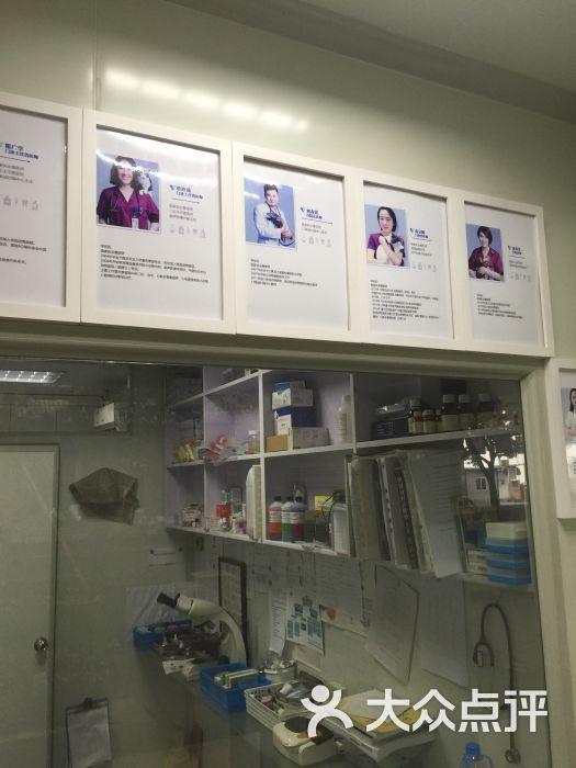 张旭动物医院-图片-杭州宠物-大众点评网