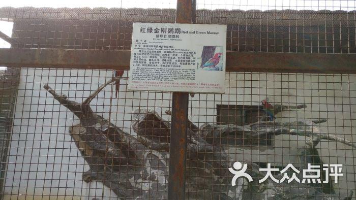 南昌新动物园图片 - 第16张