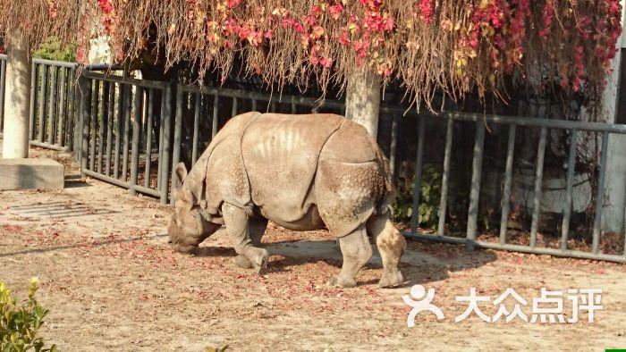 北京动物园图片 - 第8373张